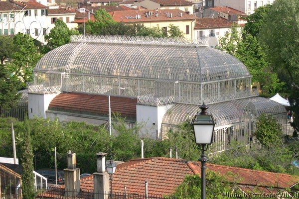 Giardino del Dragone (600Wx400H) - Garden House in the