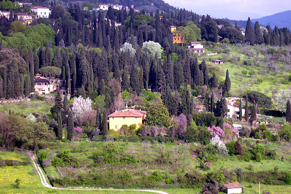 Fiesole Hill (600Wx400H) - Spring 2003. View of wondeful Fiesole's hill. (Photo by Marco De La Pierre)