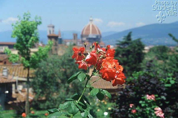 View (600Wx400H) - A view from the 'Giardino delle Rose' (Photo by Paolo Ramponi)