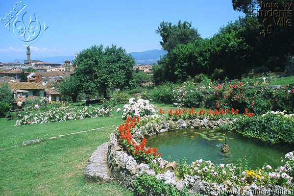 Rose Garden (600Wx400H) - Another view from the Giardino delle Rose, just below the Piazzale Michelangelo (Photo by Paolo Ramponi)